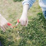 初デートで告白はあり?初デートの告白を成功させる方法と体験談
