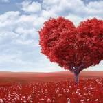 癒えない心の傷の癒し方!心の傷の診断方法や気分転換する方法も