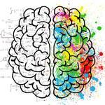 不器用な男女の恋愛や仕事の特徴は?右脳・左脳型別の克服方法!