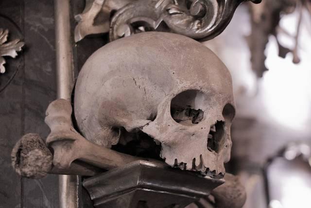 頭蓋骨 悲しみ 納骨堂 - Pixabayの無料写真 (549026)