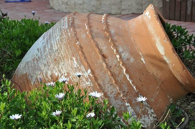 水差し 陶器 壊れやすい - Pixabayの無料写真 (649131)