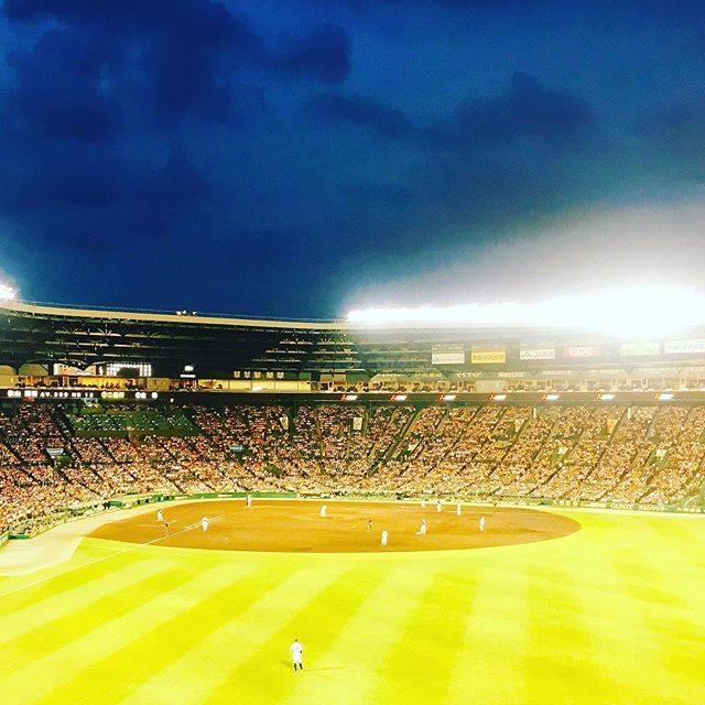 "TOMOKO on Instagram: ""2019.6.21西武ライオンズ✖︎阪神戦#西武ライオンズ #秋山翔吾#甲子園かっこよかった♥️"" (420908)"
