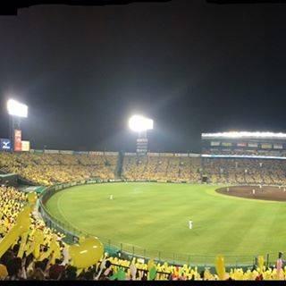 """@chopin113 on Instagram: """"甲子園🐯勝っても負けても楽しい。 勝ったら…、も……っと楽しい🐯#阪神タイガース #プロ野球 #甲子園球場 #野球 #baseball #hanshin"""" (420948)"""