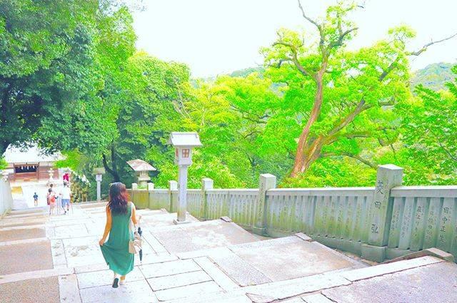 """れん。 on Instagram: """". . 階段と木と… ふとした瞬間にとても綺麗な世界に 連れて行ってくれる、そんな存在です。 . #香川県 #琴平 #金刀比羅宮 #こんぴらさん #階段 #木 #景色 #一眼レフ初心者  #一眼レフ練習中 #一眼レフのある生活  #写真好きな人と繋がりたい…"""" (520831)"""