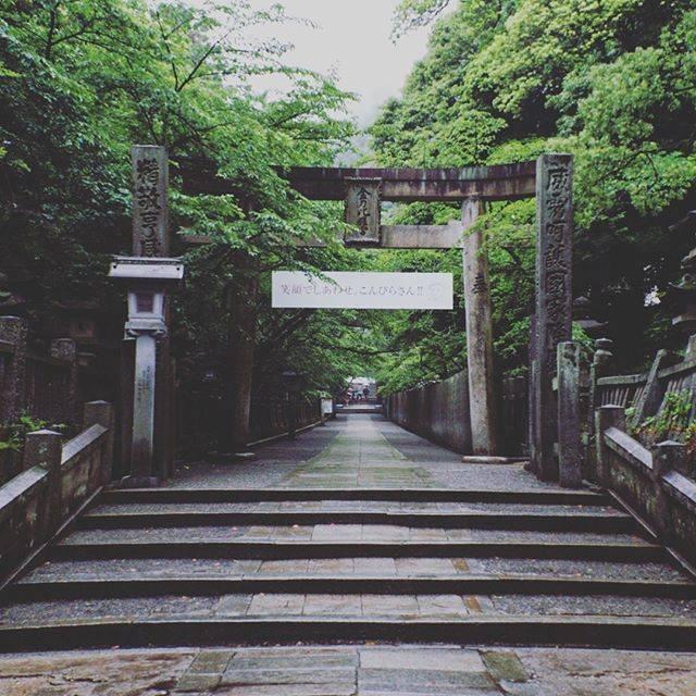 """saitama'93 on Instagram: """"#こんぴらさん #金刀比羅宮 #香川 #雨 #梅雨 #キリトリセカイ #フルサイズミラーレス #loves_nippon #jp_gallery #pic_jp #japan_focus #japan_of_insta #art_of_japan #team_jp…"""" (520874)"""
