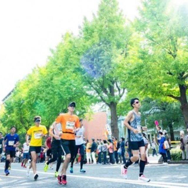 """マラソン on Instagram: """"【ニュース:横浜マラソン 5/20エントリー締切 11/10開催】 横浜を走る、世界が変わる。横浜マラソン2019(2019.11.10開催)のエントリーが、5月20日(月)19時で締切になります!…"""" (565364)"""