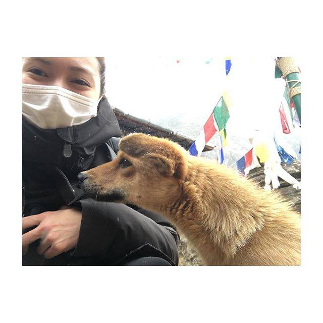 """Fumi Nikaido on Instagram: """"感謝の気持ちを、沢山感じる旅をしています。どこかでお伝えできたらいいなぁ。応援してくださる方々へ改めて!今年もよろしくお願いします^_^おふみ"""" (589075)"""