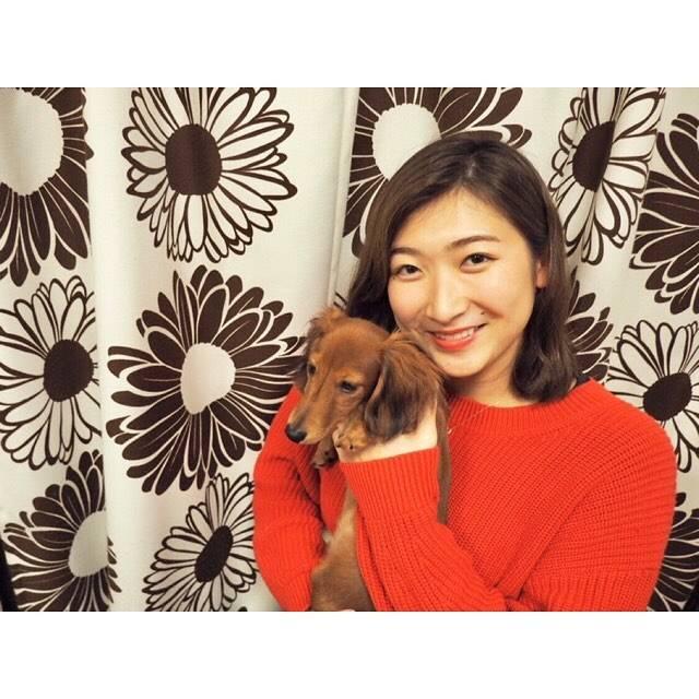 """Rikako Ikee on Instagram: """"*お友達のお家のワンちゃん🐶4ヶ月のちっちゃい子でした。とっても大人しくて可愛かった😍💕今は飼えないけど大人になったら飼いたいなぁ〜❤️#ミニチュアダックスフンド #よりもうひと回り小さい"""" (594203)"""