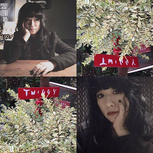 """chiekajiura on Instagram: """"ずーーーっとずーーーーーっと ウルフカットしたかったのだけど かなりロングだったから迷うだけで。 でもなんだか最近、 花も切れ切れ言うし、ワタシも いい加減変えたかったりラジバンダリー (うわラジバンダリーなつい) 、、、で 美穂さんの魔法でガラリと変身です✨…"""" (594502)"""