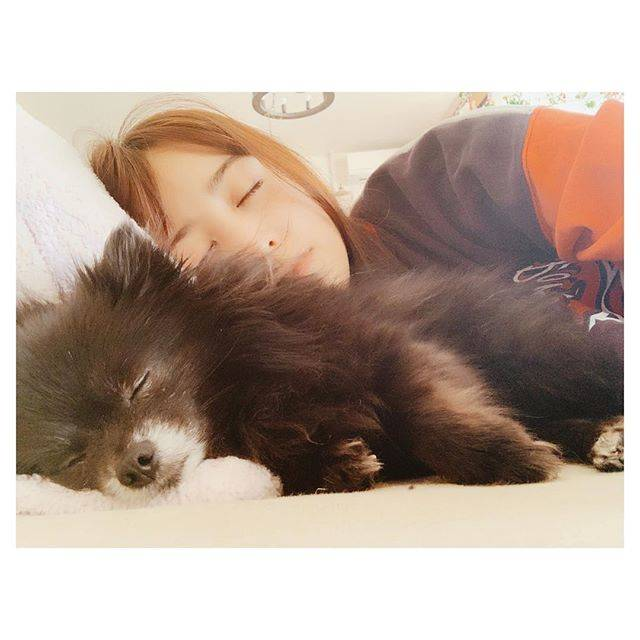 "MIZUKI YAMAMOTO on Instagram: ""今日もお疲れ様でした。こつめとお昼寝の様子です。 #kotsume"" (621790)"