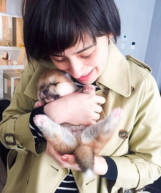 """ホラン千秋 official on Instagram: """"ちょっと前に友人のお家で秋田犬が産まれました🐶産まれたばかりでまだ目も開いてないの!モフモフで愛くるし過ぎた💕ずっと抱きしめていたい。。。"""" (634193)"""