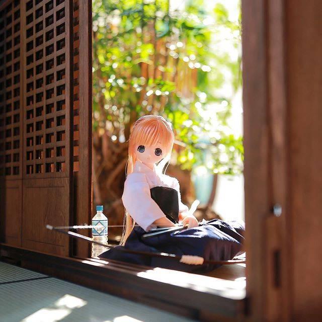 "Ariya Mari on Instagram: ""practice ended #azonedoll #azonejp #azone #azoneinternational #pureneemo  #dollphotogallery #toyphotography #miniature #rementjapan…"" (652559)"