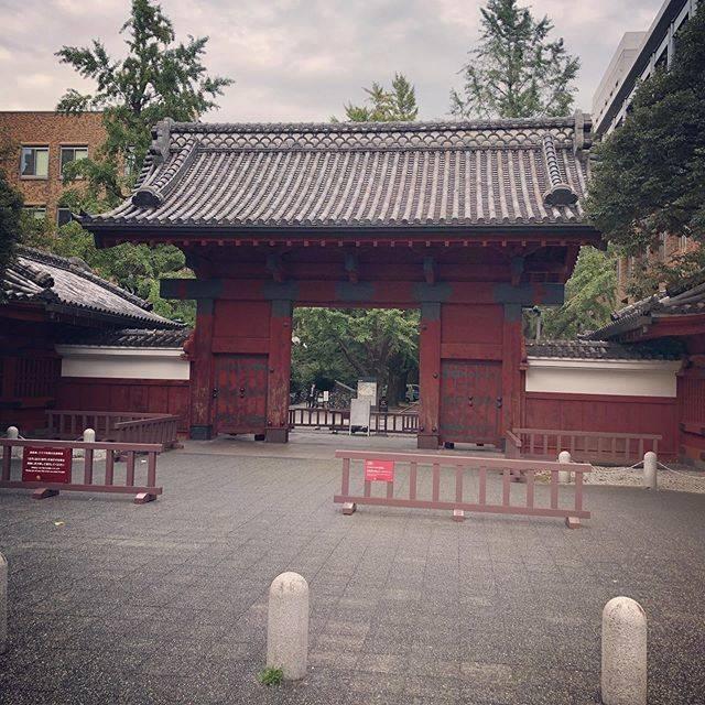 "Eiji Watanabe on Instagram: ""入学しようかな😅#東京大学 #赤門"" (662561)"