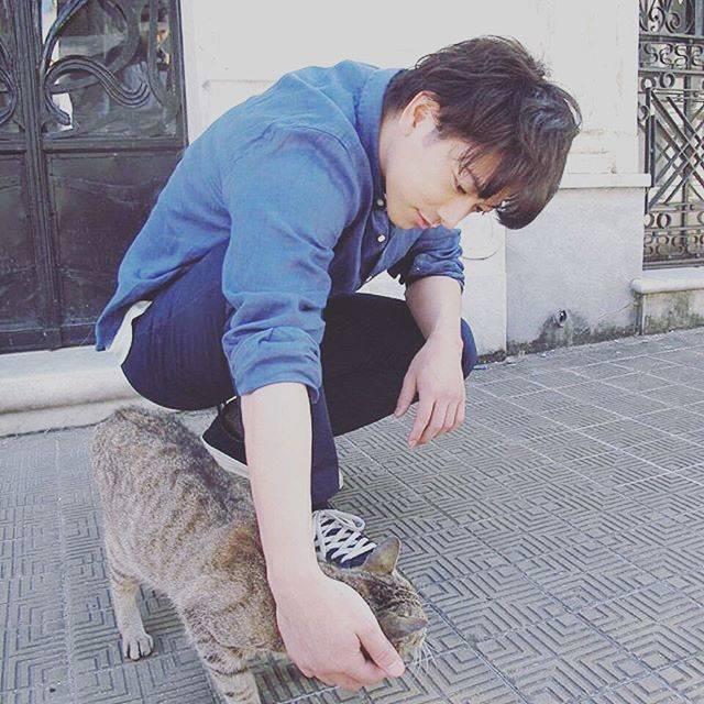 """Odashima on Instagram: """"..猫になりたい切実に。(笑)..#佐藤健#モニタリング#世界から猫が消えたなら🐈"""" (678355)"""