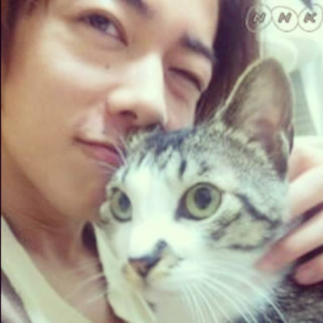 "佐藤健 ( Satoh Takeru ) on Instagram: ""Neko chan....... #satohtakeru #satotakeru #takerusatoh #rurounikenshin #myidol #japan #actor #kakkoi #kawai #neko #handsome #cute #cool"" (678374)"