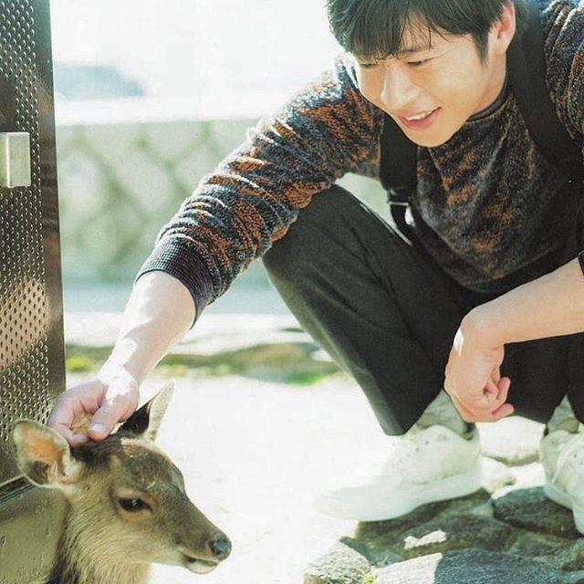 ٩( ᐛ )وYさんはInstagramを利用しています:「:鹿さん圭くんになでられてるのによくそんな真顔でいれるよね 笑笑#田中圭 #好き好き #田中圭ファンと繋がりたい #田中圭かっこいい #田中圭依存症 #田中圭中毒 #パピのチビになりたい #好きすぎて辛い #圭くん」 (680558)