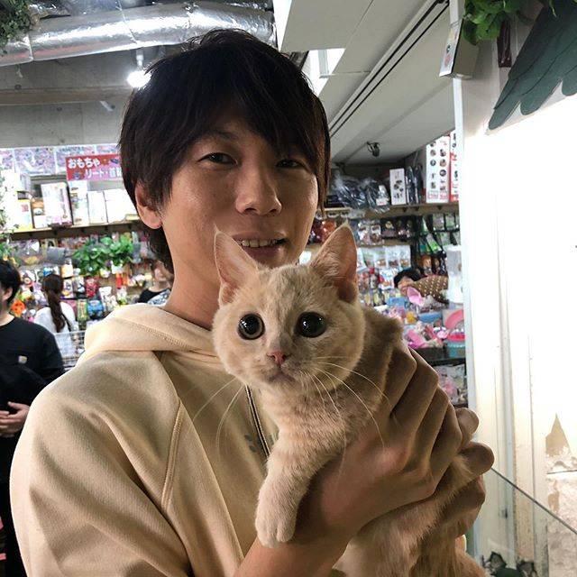 """古市憲寿 on Instagram: """"例の猫さん。"""" (689688)"""