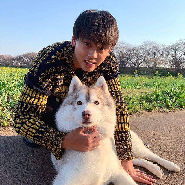 """竹内涼真 on Instagram: """"また会いたいぜ ジャーマン 🐶"""" (690461)"""