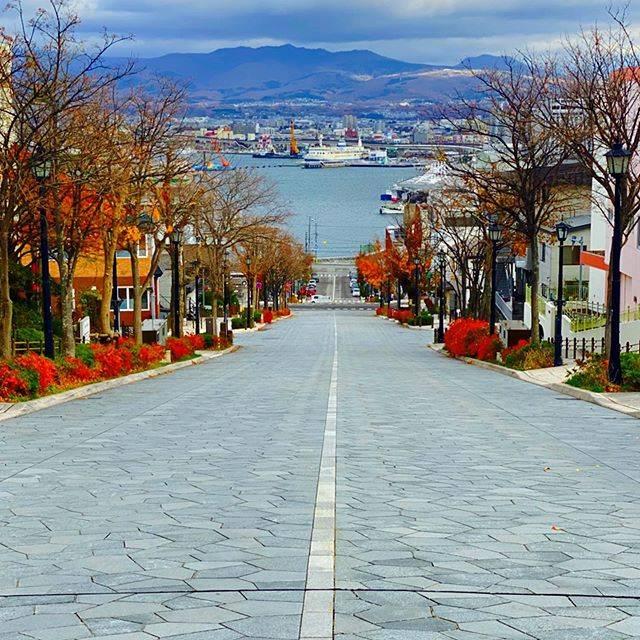 """トリップノート[tripnote] on Instagram: """"坂の町・函館「元町」を象徴する「八幡坂」❗️海に向かってまっすぐに伸びる坂がとても美しい景観を作りだしていますね🚙冬にはイルミネーションで彩られロマンチックな雰囲気になります💫 このお写真は、ばやかわさんのお写真です。(旅フォトの投稿はトリップノートのアプリから📲) #北海道…"""" (744482)"""