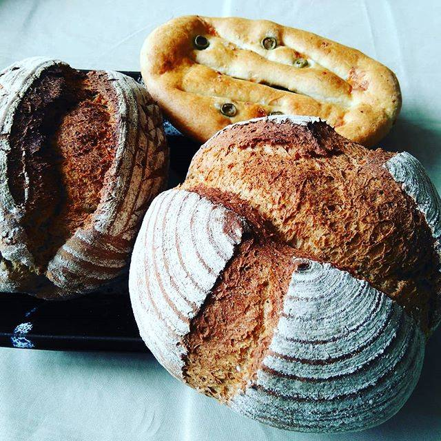 "Ryouichi Yoshida on Instagram: ""#旭川市 #ベッカライ麦々堂 #パン屋 #パン #ハードパン #ライ麦パン"" (746241)"