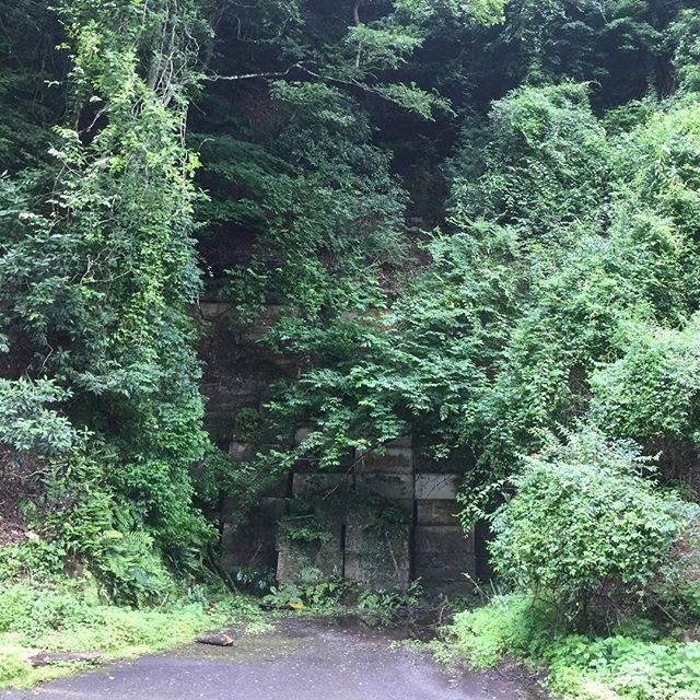 "Sugar Sugar on Instagram: ""#旧犬鳴トンネル 今の車が通る二車線のトンネルとは違い、素掘りの小さな隧道ですが、なんとも言えない迫力。ちょっと近づき難い怖さ。#犬鳴峠"" (747742)"