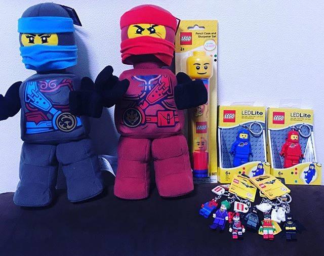 "Hideki Tanaka on Instagram: ""ジュニアちょいすぬいぐるみ#レゴのぬいぐるみ無しやろ#レゴ感出てない#lego#レゴ#レゴランド#レゴランドお土産 #田中玩具"" (748557)"