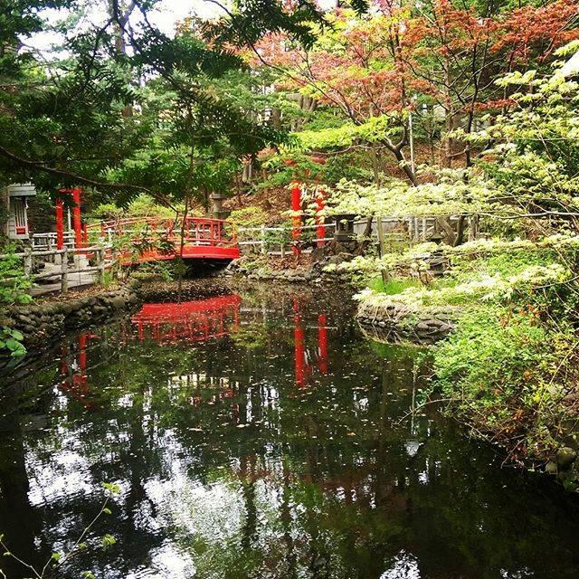 "KenPaPa on Instagram: ""#myphotos #白石神社 #札幌市 #北海道 #景色 #神社"" (749035)"