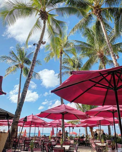 "Aloha days on Instagram: ""#hawaii#royalhawaiian #pinkpalace #onthebeach #pink#coconuttree #ハワイ#ハワイ旅行 #ハワイ挙式 #ピンク"" (749935)"