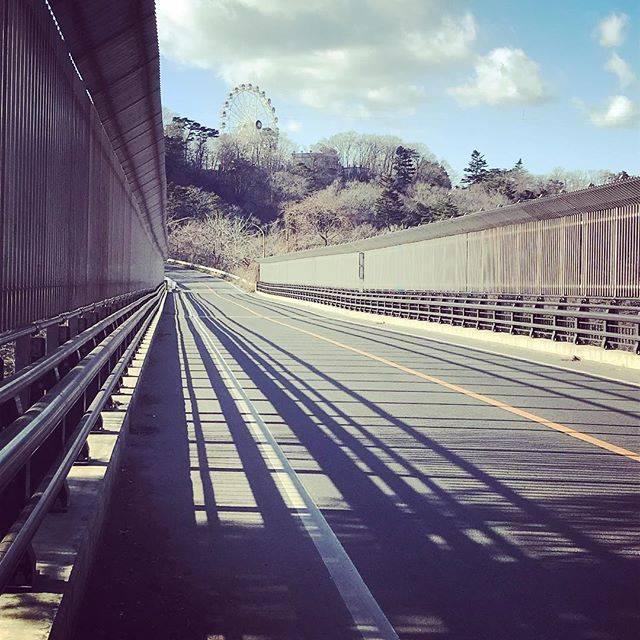 "kazu-channel on Instagram: ""ひとりで渡る八木山橋。#仙台#bridge#八木山橋"" (750319)"