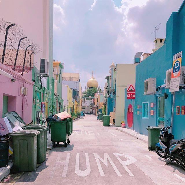 """⋆✩  𝓂𝒾𝓀𝒾  ✩⋆ on Instagram: """"🕌💕 歩いてるだけで楽しかった🥳 カラフルで可愛い💞 #アラブストリート #サルタンモスク  #シンガポール #singapore #モスク #好きだわ  #ハジレーン #お洒落  #ブギスストリート  #旅行pic  #インスタスポット  #ぶらぶら #楽しかった…"""" (750666)"""
