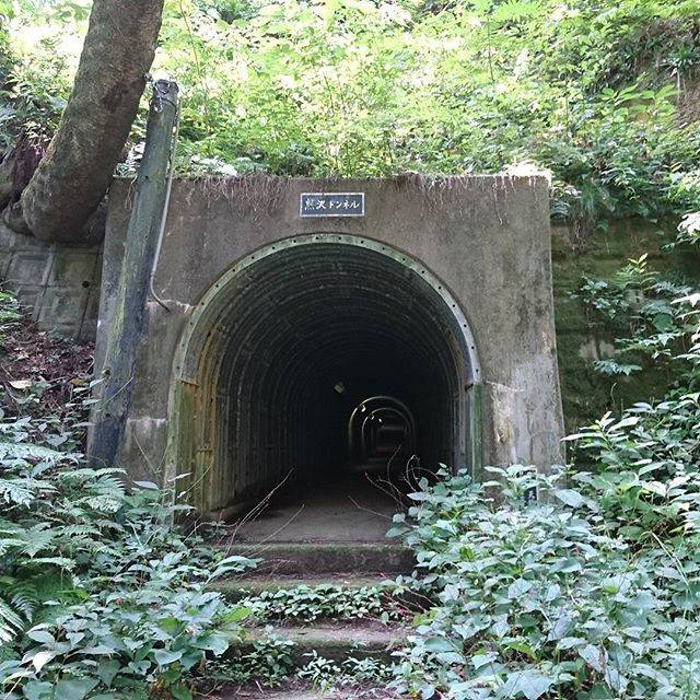 "Koki Mori on Instagram: ""今度はアプローチ成功!熊沢トンネルは、明治時代に油田から出た原油を輸送するために作られたトンネルで、当時の皇太子殿下(後の大正天皇)も訪れたそう。獣道を掻き分けていくルートを選んでしまい、たいへんでした(;´∀`) #熊沢トンネル #新潟 #新潟旅 #GPS必須 #廃墟 #遺構…"" (753239)"