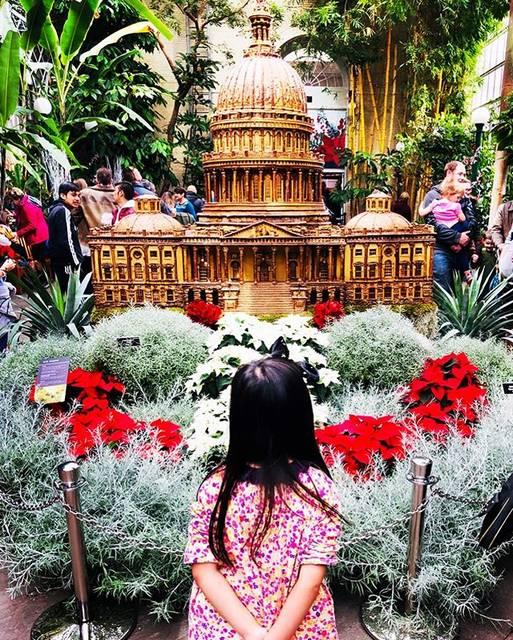 "Mutti on Instagram: ""Holiday decor of United States Botanic Garden🎅  #usbc #dcbotanicalgardens #unitedstatesbotanicgarden #米国植物庭園 #ボタニックガーデン #ワシントンdc観光 #6歳女の子…"" (761517)"