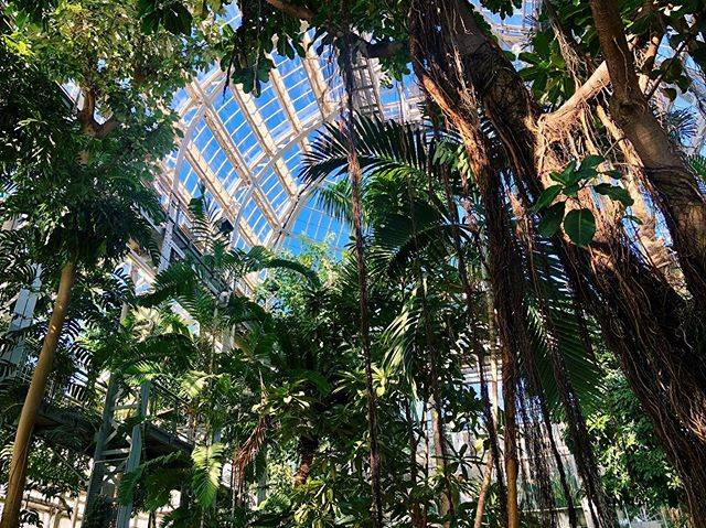 "@cuneckv on Instagram: ""2019 || caged giants"" (761524)"