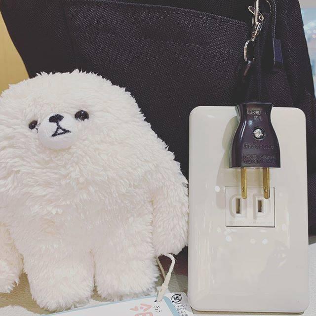 """つみきちゃん on Instagram: """"ヒマティーとコンセントの定期入れ #ぬい撮り #ヒマティー #コンセント #定期入れ"""" (763149)"""