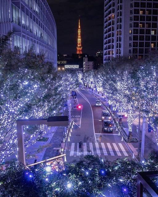 """旅行メディア・じゃらん〈公式〉 on Instagram: """"【 #けやき坂イルミネーション 】 約400m続くけやき坂通りに""""SNOW&BLUE""""のLEDが点灯し、 樹氷のように光り輝く冬の散歩道に変身します。 ウェストウォークには、個性的なドレープのクリスマスツリーが出現します。 どれも遅い時間まで楽しむことができるため、…"""" (763544)"""