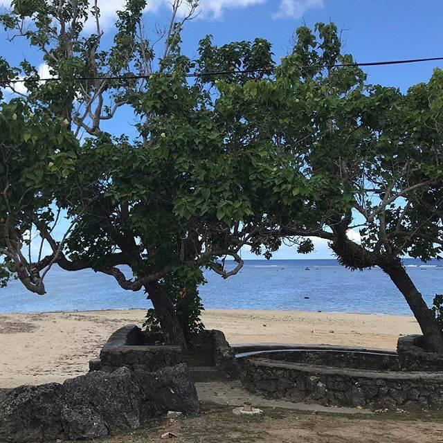"""グアム大人の旅ブログ on Instagram: """"グアム ハガニア  ̄ ̄ ̄ ̄ ̄ ̄ ガバナーズオフィスからの眺め❤️ 青空と海と木。 自然に癒されますー😌 . 昨日はエスタについての動画を沢山見ていただき嬉しかったです。ありがとうございました😊 本日はグアム旅行におすすめの時期をご紹介しました。 .…"""" (766010)"""