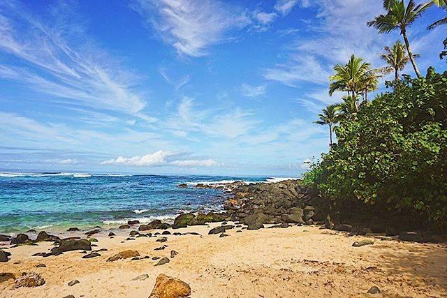 "Josh Thompson on Instagram: ""Aloha☀️ . . . #Hawaii #Oahu #NorthShore #LaniakeaBeach #Hawaiistagram #HawaiiNei #GoHawaii #VisitHawaii #LetHawaiiHappen #Aloha #Beach…"" (767103)"