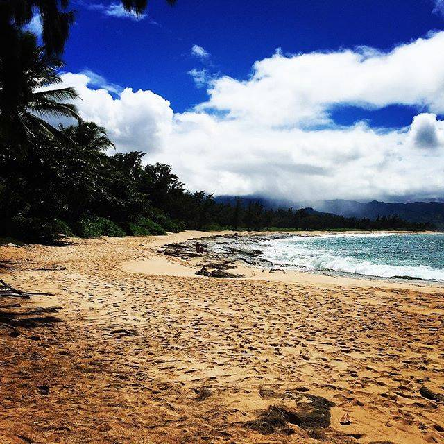 "Jun  Kato on Instagram: ""久しぶりのLOSTツアー#Lost #ハワイ #オアフ #パパイロアビーチ"" (767105)"