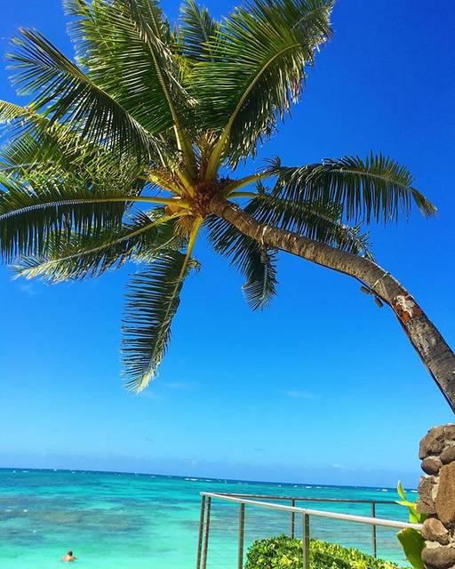 """Manaloha💙 on Instagram: """"🍍 * * Happy Aloha Friday🌈 * このビーチもお気に入り🥰 * 青い空と青い海でブルーチャージ💙 * 皆さま素敵な週末を…☺︎♡ * * #kaionabeach #カイオナビーチ  #ブルーチャージ…"""" (767107)"""