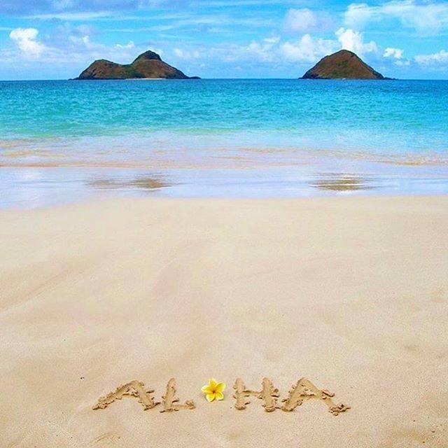 "N I N A    T H A I on Instagram: ""It's the last Aloha Friday of the decade! 🌺🌴 📸: @kiko_hiwalker"" (767156)"