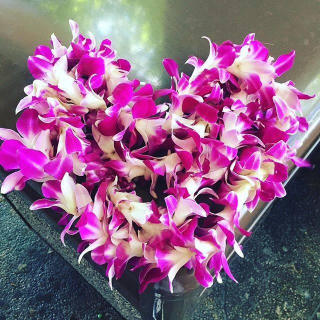 "@satoko_isshiki on Instagram: ""🧳素敵なものをいただきました🌺ちょっと置いてみたよ…Hawaiiは素敵なところです🌺I love Hawaii💖mahalo🌺#hawaii #ハワイレイ #ilovehawaii"" (768387)"