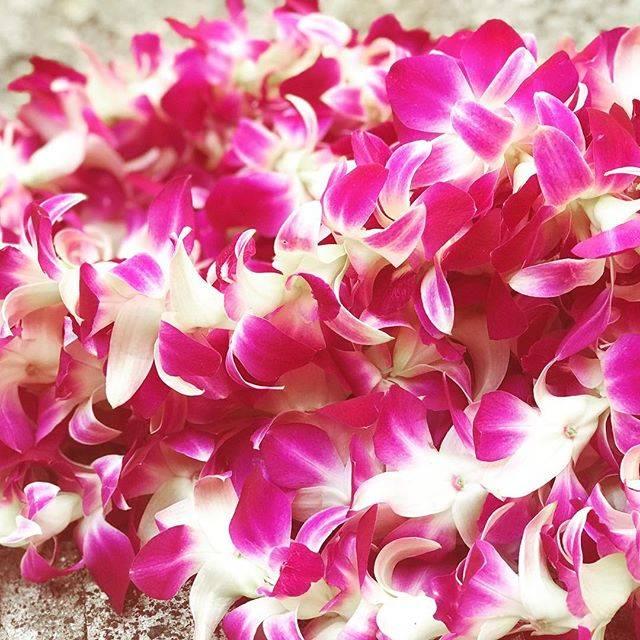 """Nail Artist Coco on Instagram: """"Aloha 💕  アロハ〜〜#ハワイ#ハワイライフ#ハワイレイ #レイ #ハワイの花 #ハワイ生活 #aloha #hawaii #hawaiilife #hawaiistyle #lei #hawaiiei"""" (768391)"""