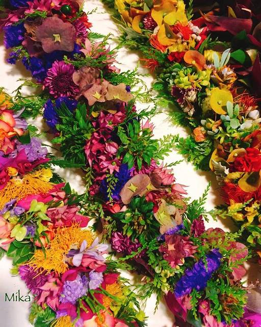 "ALOHA PLUMERIA on Instagram: ""Happy Lei Day🌺 ハワイはレイデー🏵 #hawaii #hawaiiresident  #hawaiilei #leiday #happyleiday #lei  #freshflowers #may1st  #ハワイ #ハワイ在住 #生花  #ハワイレイ…"" (768673)"