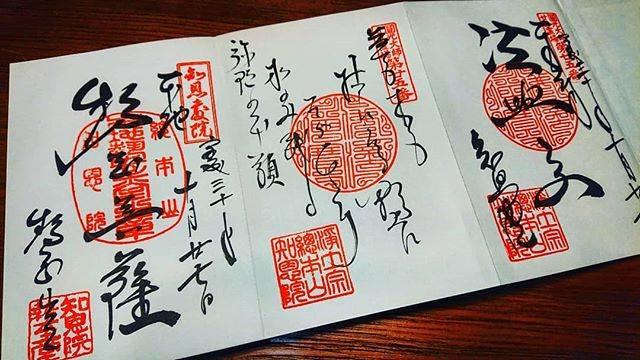 """るな on Instagram: """"知恩院😊#御朱印 #御朱印巡り #知恩院"""" (768936)"""