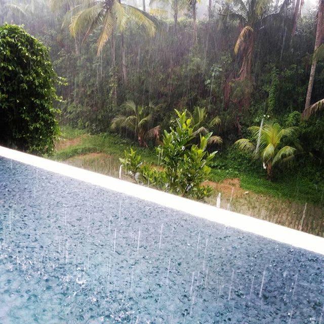 """Emiko Saho on Instagram: """"!!!!#雨期なので #豪雨 今日はvillaでダラダラする日なので問題ないけどすごい雨☔🍺飲みながら#豪雨ビュー #ubud #bali"""" (769500)"""