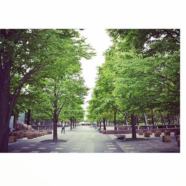 """@mstkphoto on Instagram: """"品川 #汐の公園 #初夏 #公園"""" (770193)"""