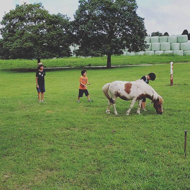 "Miho  Tanaka on Instagram: ""従弟が阿蘇に来たヨ。#阿蘇#ところにより雨#移動移動で#ようやく#落ち着いて遊べた#モーモーファーム竹原牧場"" (772808)"