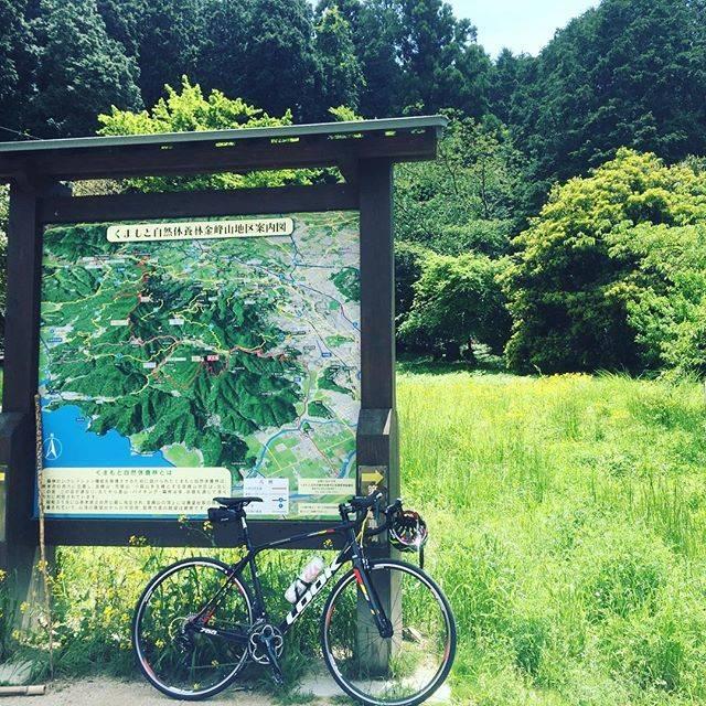 """井上浩一郎 on Instagram: """"登った!ついた!疲れた!くだる!#熊本金峰山 #ヒルクライム #look765proteam #ロードバイク #クライマー"""" (773128)"""
