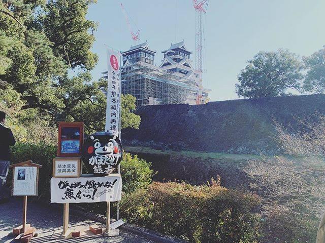 "[KAORI] on Instagram: ""熊本城へも行ってきました!昨日は天気が良くて絶好の散歩日和でした🚶♀️#熊本城 #熊本 #熊本観光 #散歩 #お城 #お城巡り"" (774347)"