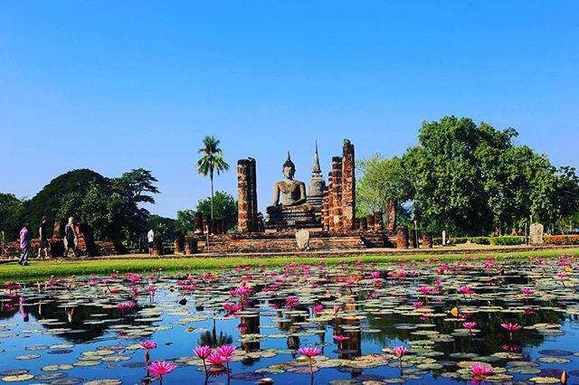 """ᴹᵃᵐᶦ on Instagram: """"Wat mahathat  in Sukhothai historical park. The Buddhist temple architecture is looked beyond the lotus blooming pond is so beautiful!…"""" (774741)"""